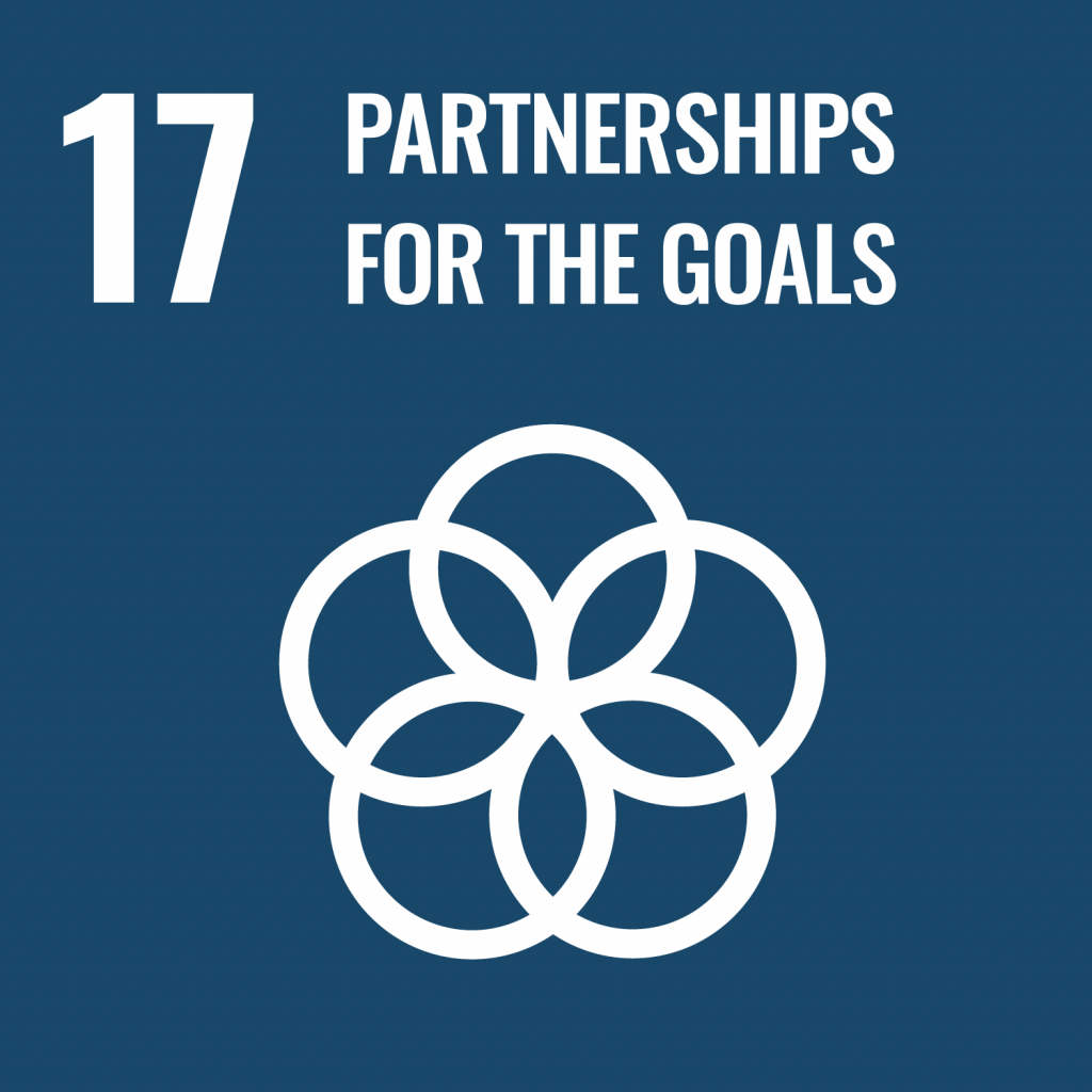 Impact SDG 17 Partnerships for the Goals image