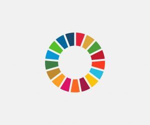 Future Proof Your Business Supports the UN Global Goals Wheel